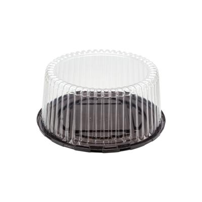ظرف کیک بلند [CK01]